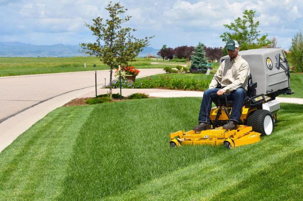 a gardener mowing the lawn